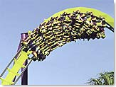 Medusa Barrel Roll, Six Flags Marine World Roller Coaster