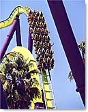 Medusa Roller Coaster Six Flags