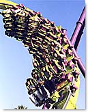 Six Flags Discovery Kingdom Medusa Roller Coaster